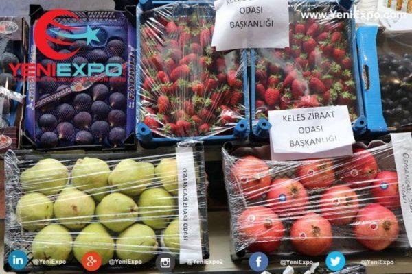 Bursa agriculture fair burtarim yeniexpo