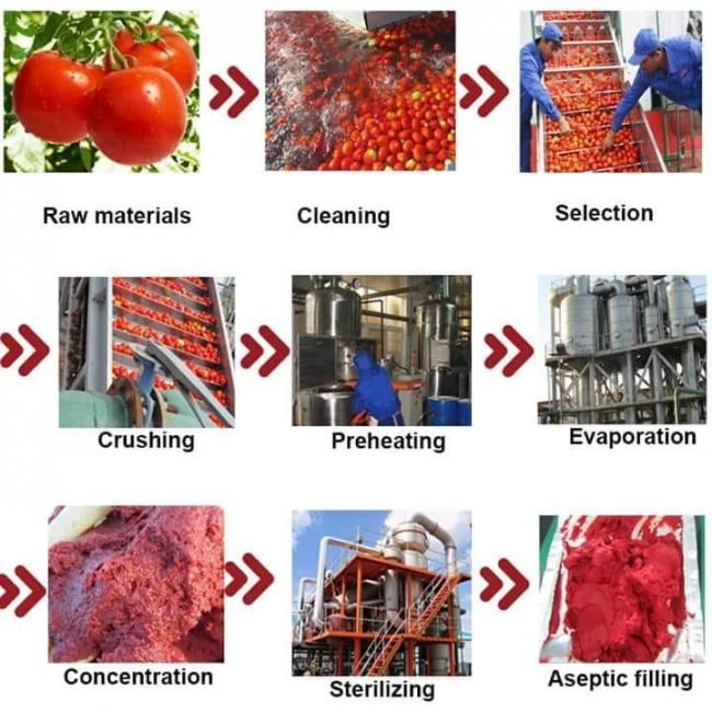 Tomato paste tomato puree producti