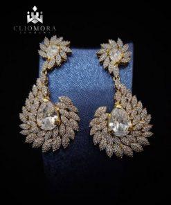 Luxurious earnings brilliant cliom