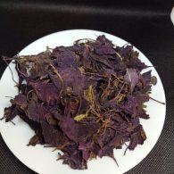 Basil Herbal Tea Nutritious Natura